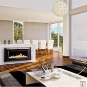 Escea DL850 fireplace